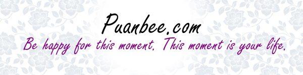 Puanbee.com